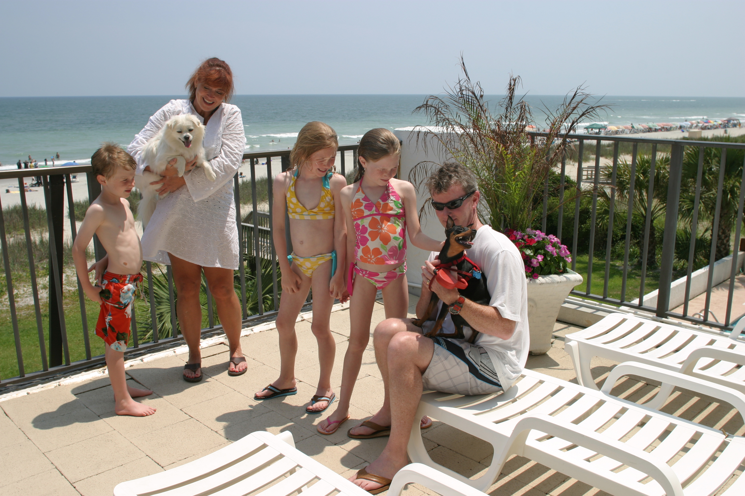 Top Rated Pet Friendly Resort - Ocean Park Resort