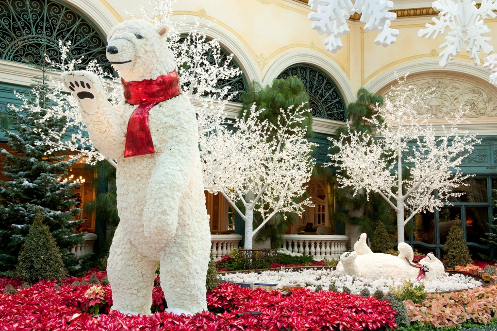 Bellagio Conservatory - Polar bears