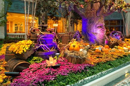 Bellagio Conservatory U0026 Botanical Gardens Captures The Spirit Of Harvest  Season.