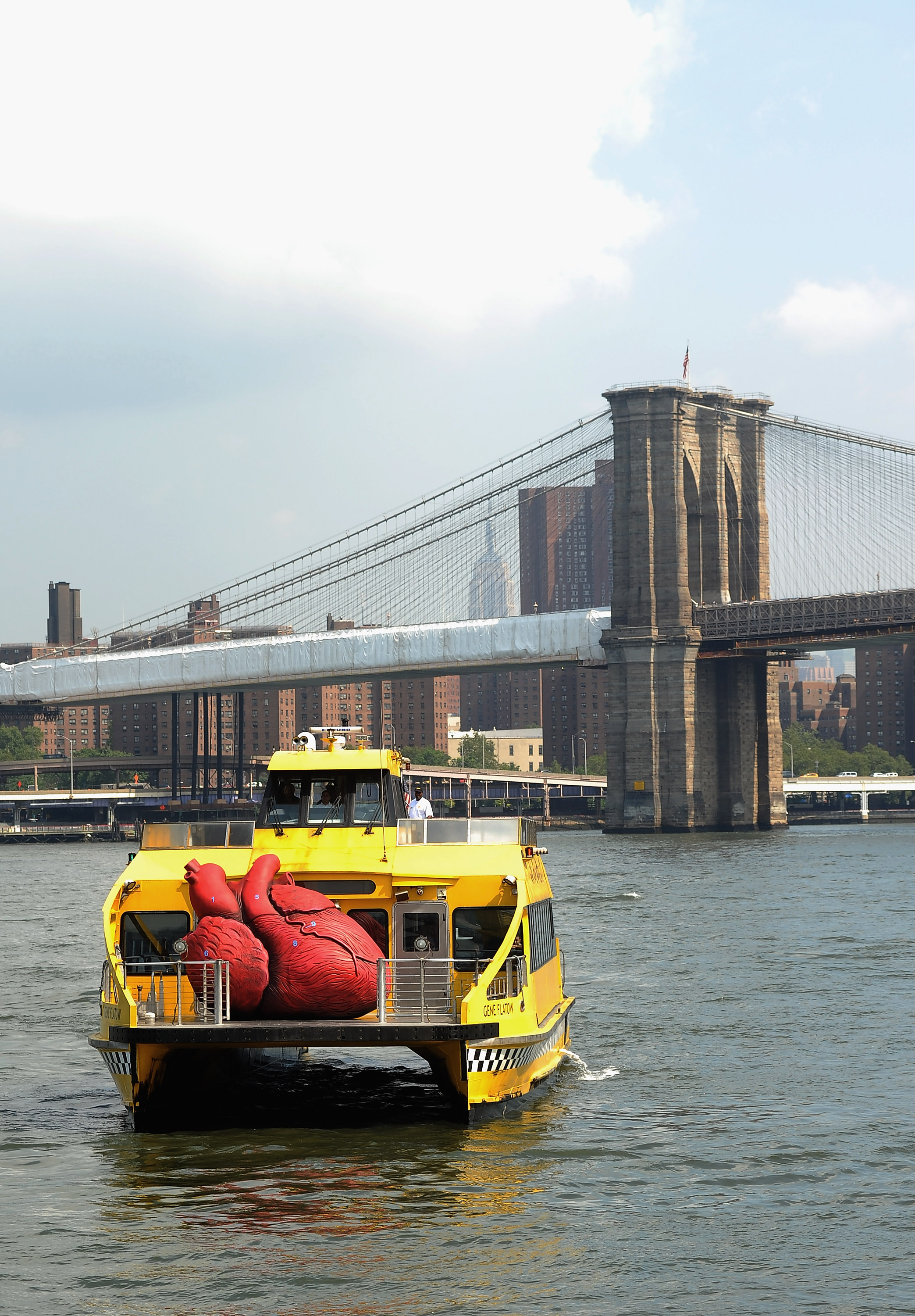 BODIES...The Exhibition's Huge Heart Arrives on New York Water Taxi in Front of Brooklyn Bridge
