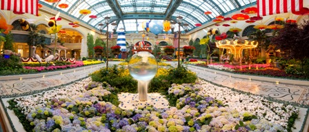 Sail to New England at Bellagio's Conservatory & Botanical Gardens.