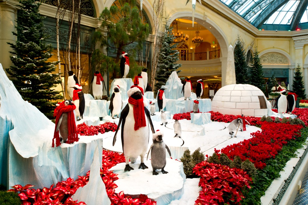 Bellagio Conservatory - Penguins