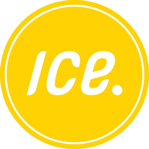 ICEdot, an emergency identification and notification service, will launch its Yellow ICEdot program in Philadelphia on January 9. www.icedot.org