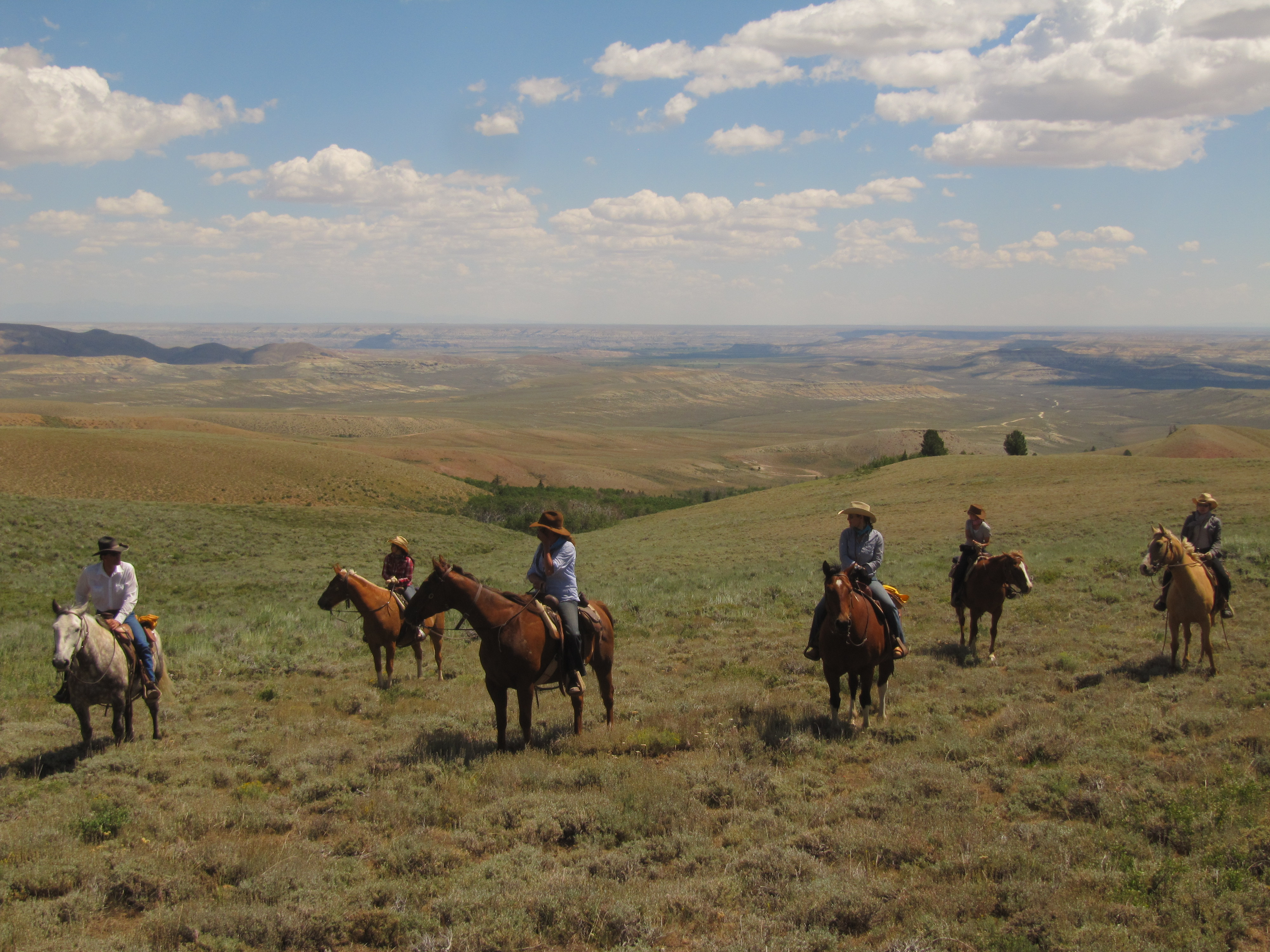 Freedom - It Leaves Hoof Prints. Ride the Wide-Open Spaces with Blue Sky Sage Horseback Adventures!