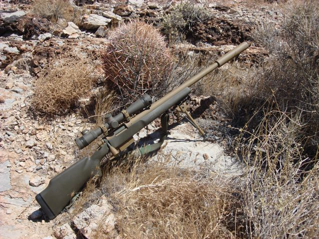 Venom Tactical Custom Sniper Rifle GemTech