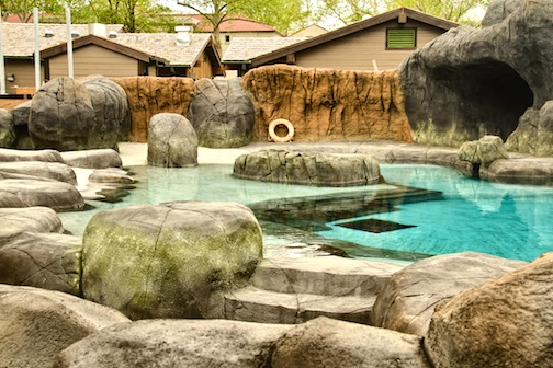 Newly constructed seas lion sound exhibit at Saint Louis Zoo features Xypex concrete waterproofing.