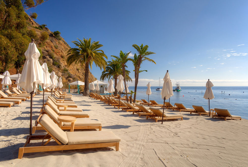 gorgeous sand pristine water and ample lounge chairs can be found at descanso beach - Beach Lounge Chairs