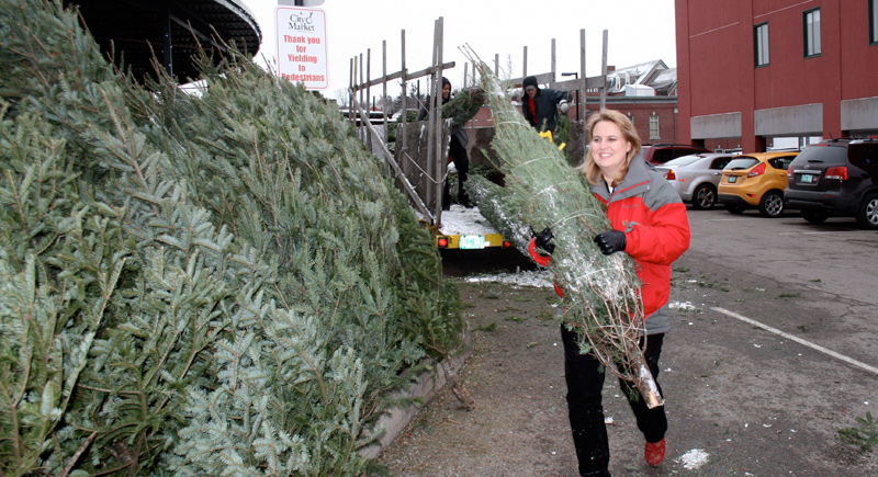 Becky Holt and City Market staff help unload trees at the COTS Tree Sale.