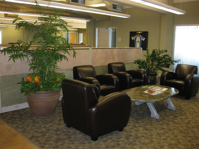 The renovations included reupholstering workstations in bright colors and adding greenery around the office.