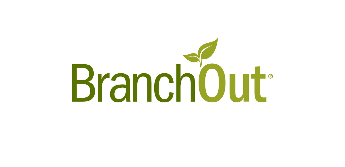 BranchOut