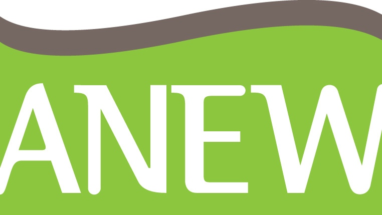 ANEW Logo