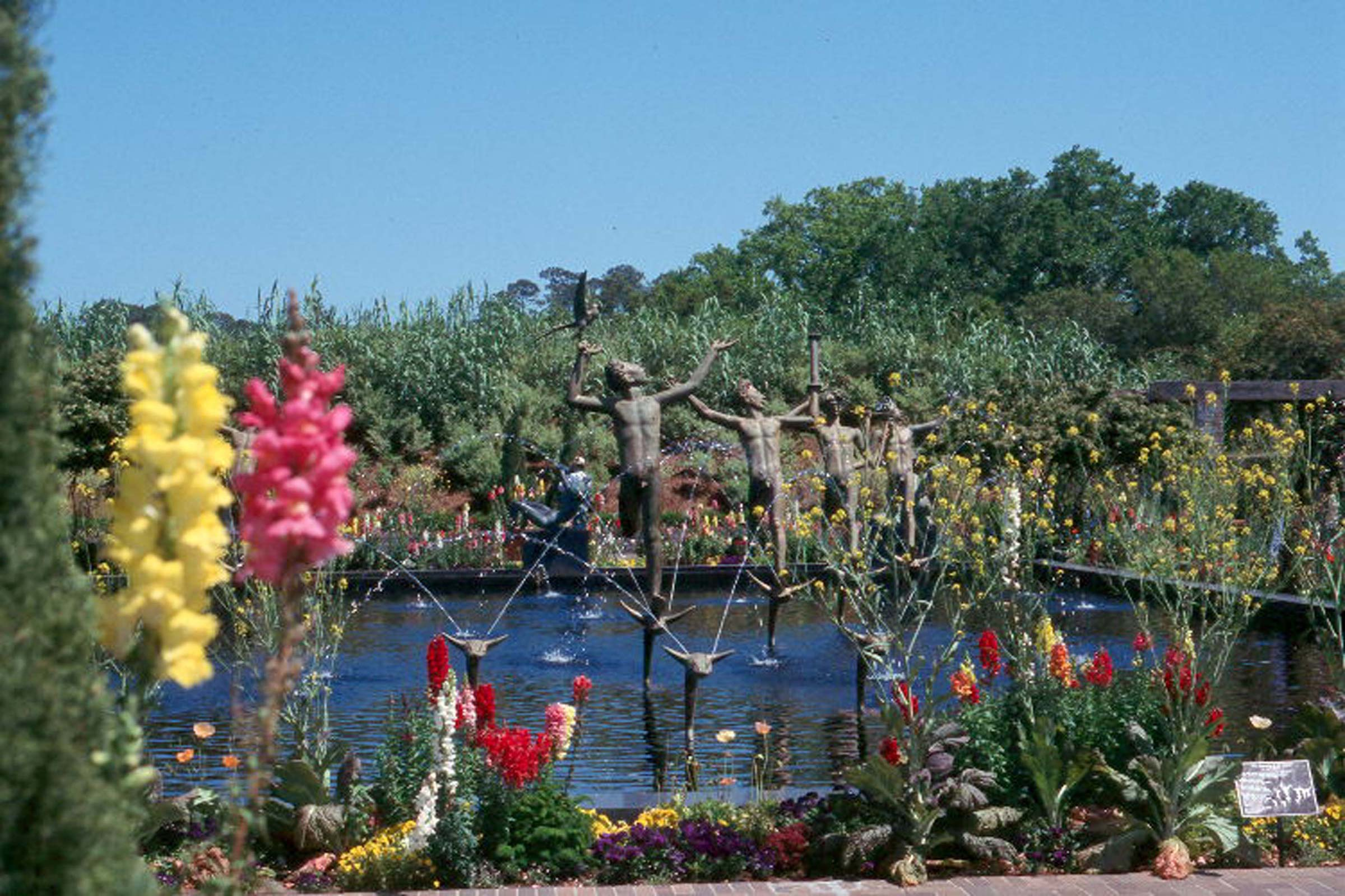 See spring in full bloom at Brookgreen Gardens in the Myrtle Beach area of South Carolina.