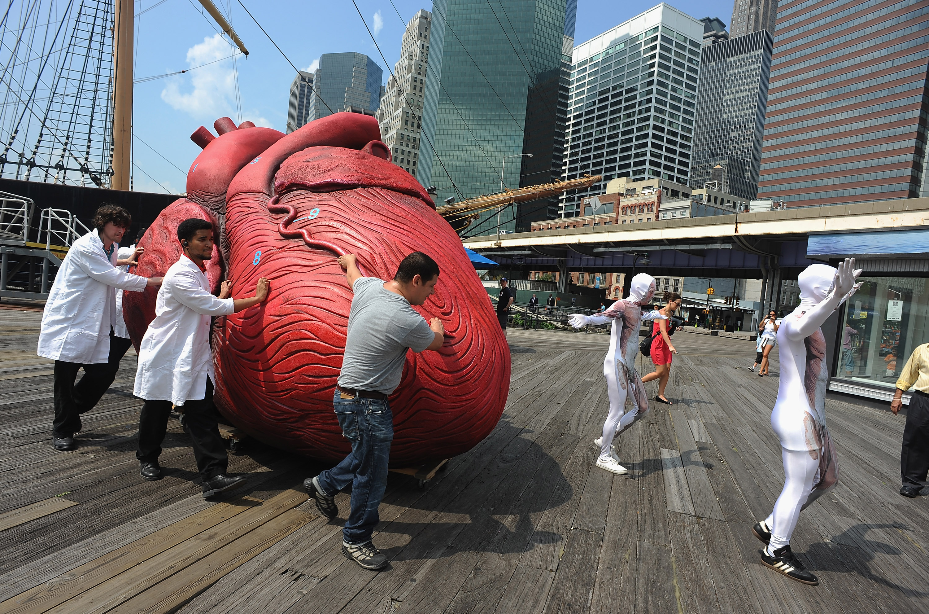 BODIES...The Exhibition Unveils Huge Heart at South Street Seaport