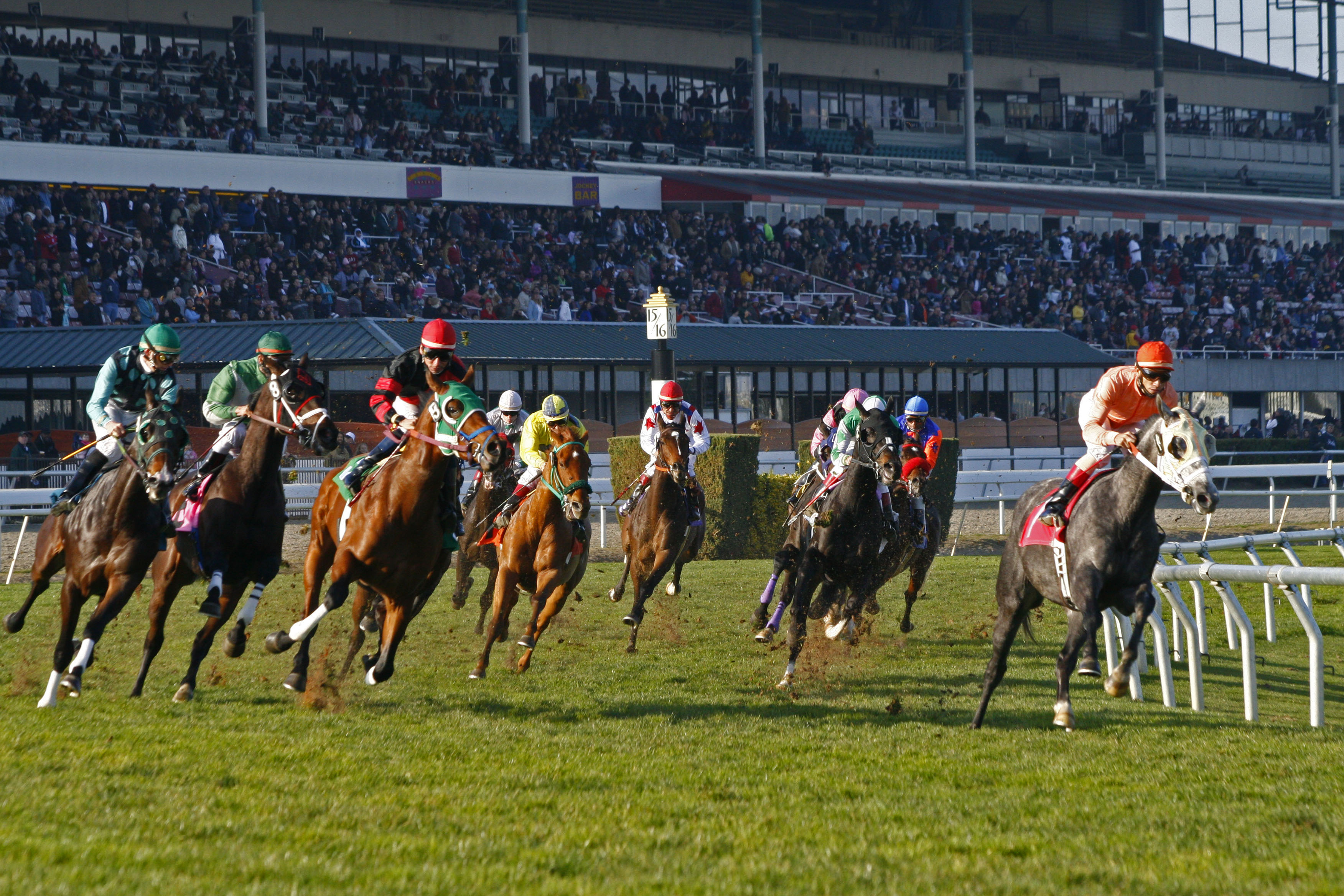 Racing at Golden Gate Fields
