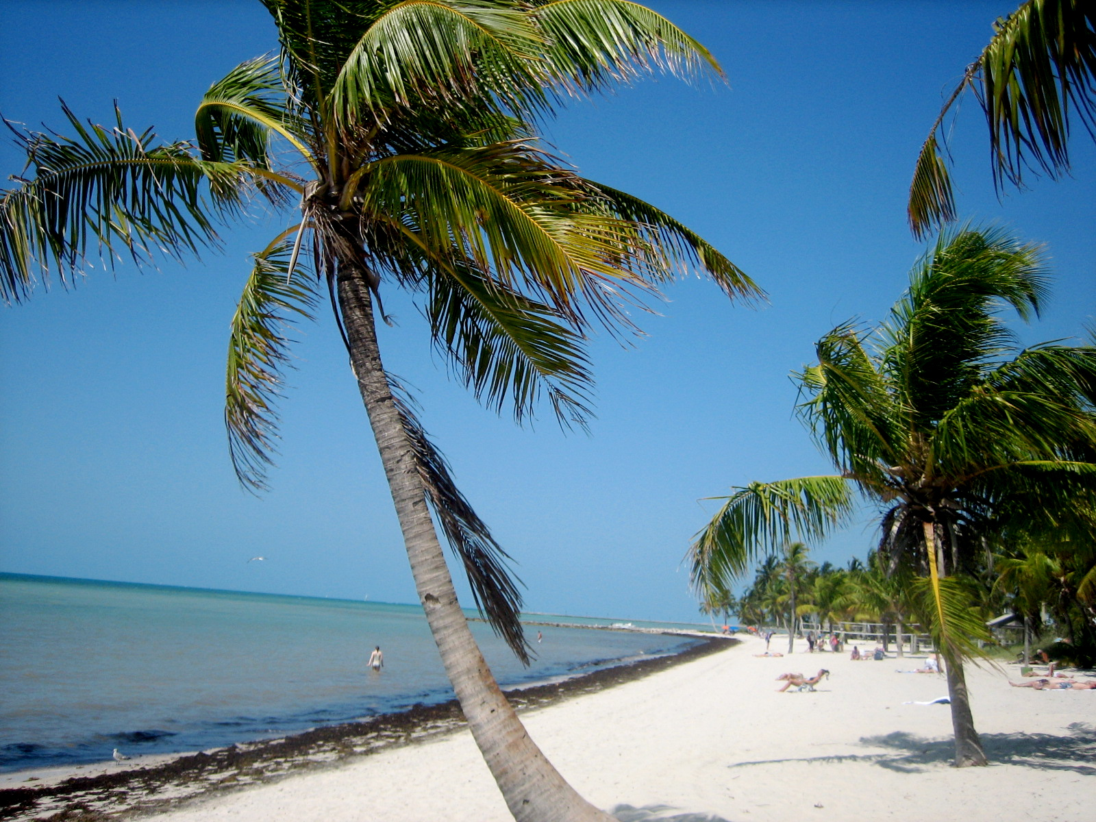 "Book 2: ""Pilate's Key"" takes place in Key West, Florida."