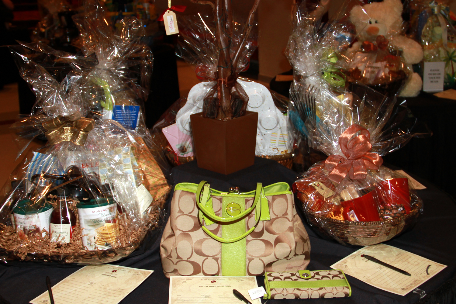 Vintage in the Valley has many raffle and silent auction items on display. (2011)