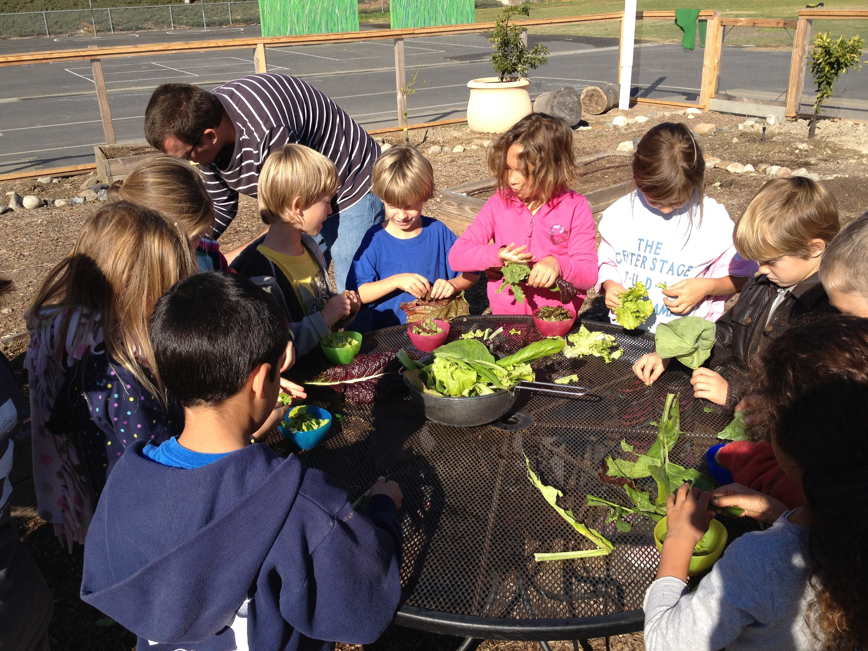 Students enjoying their harvest