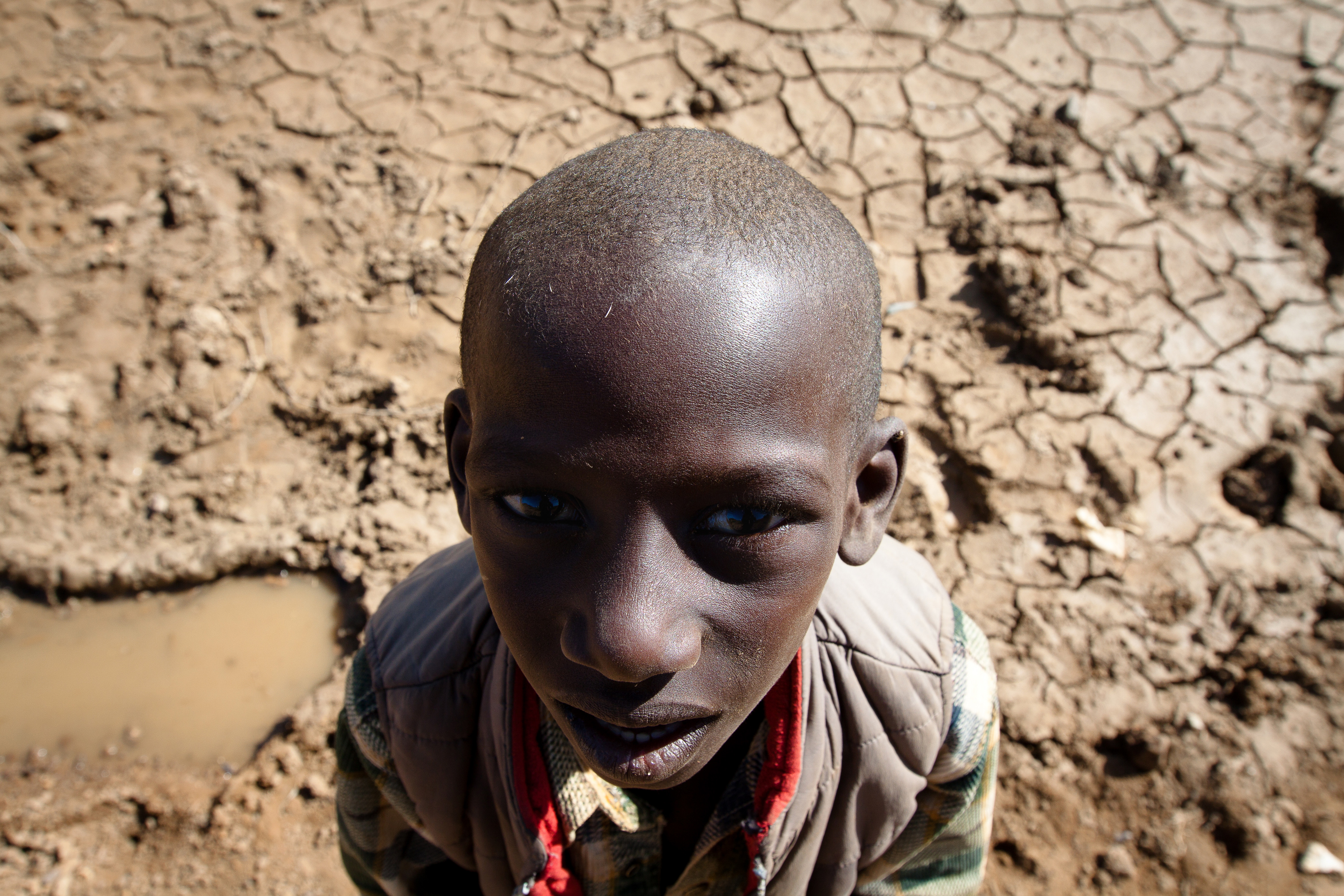African Children Starving Feed my starving childrenAfrican Children Starving Vulture