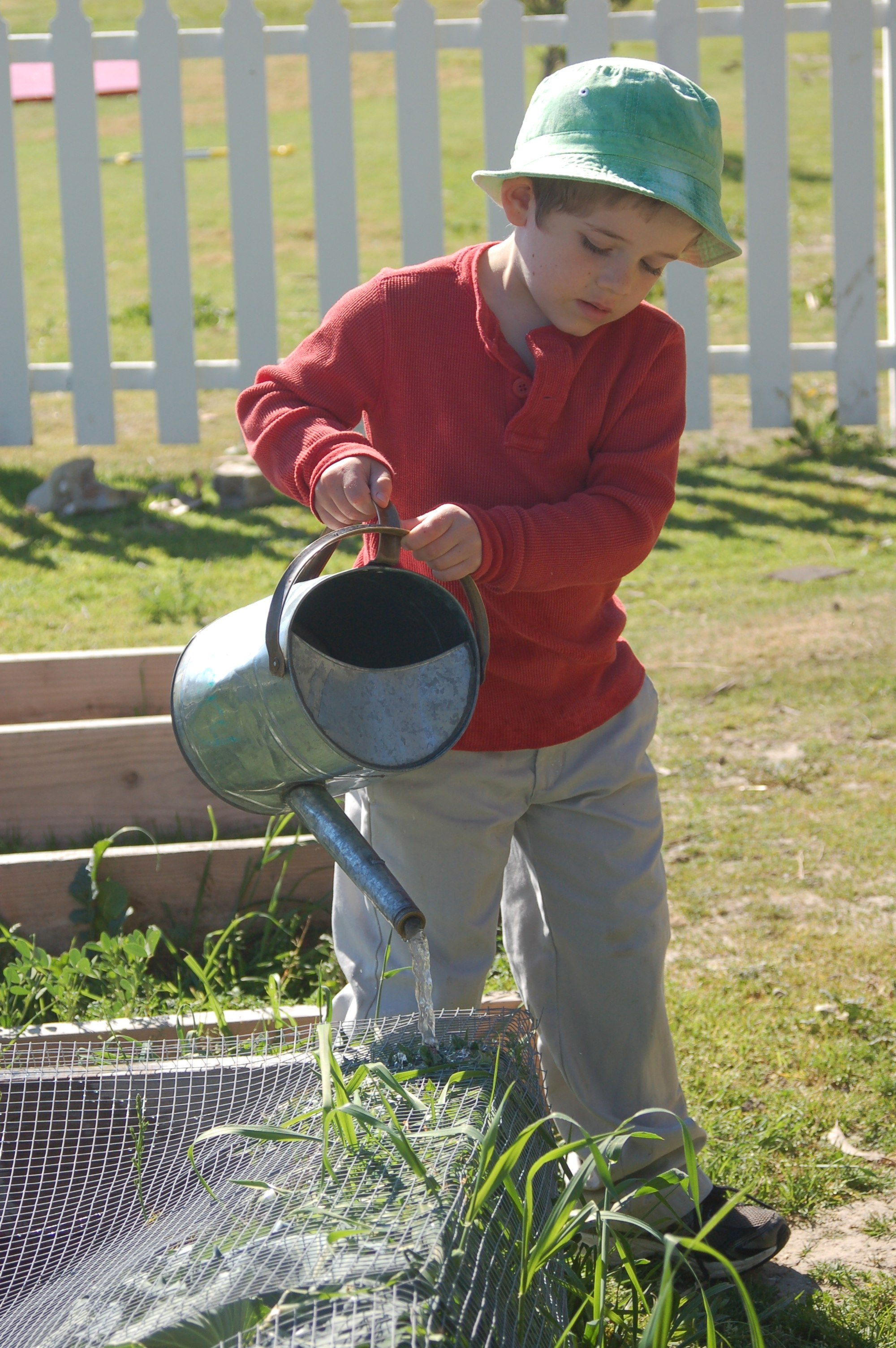 Watering the Kindy garden