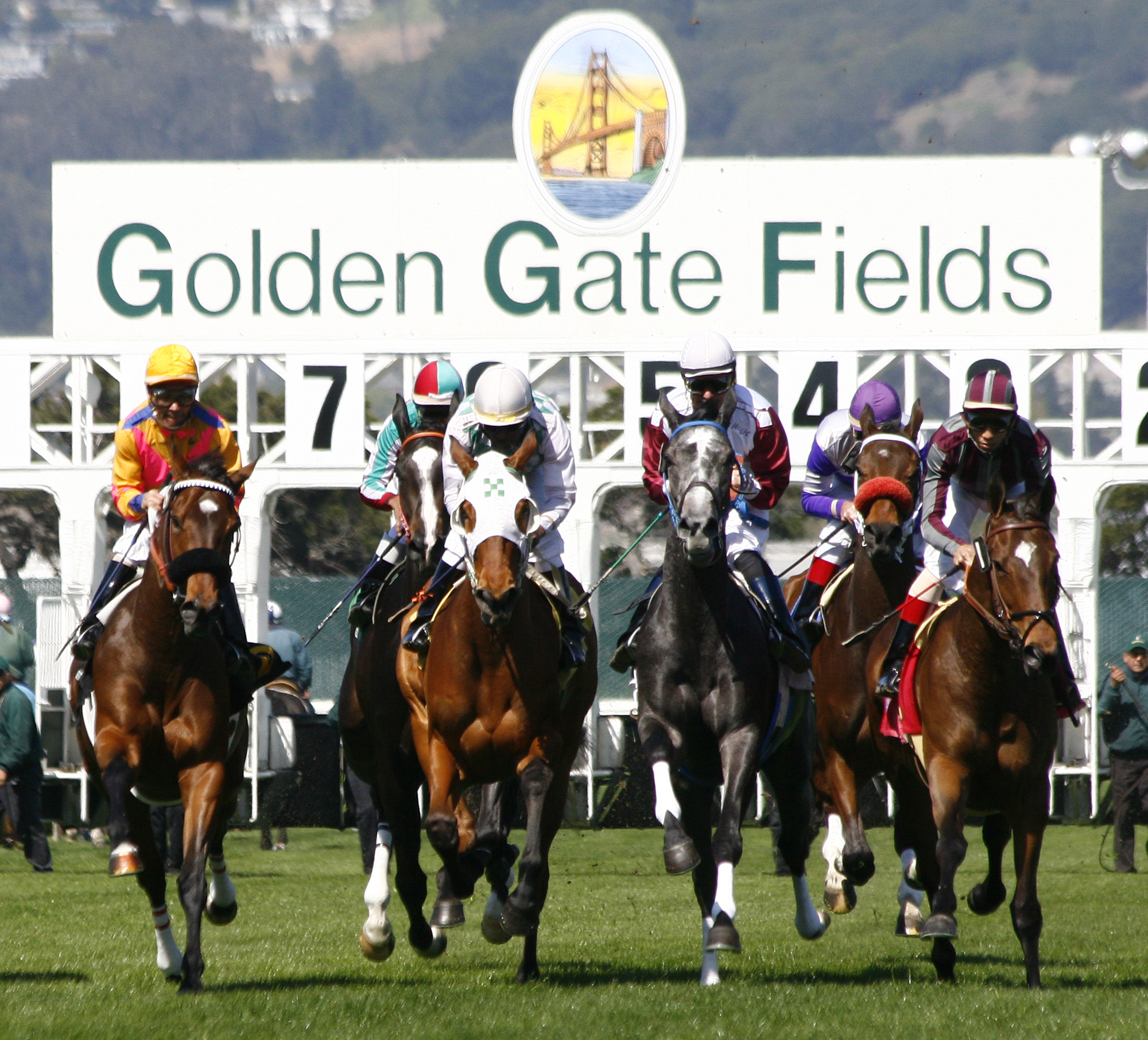 Golden Gate Fields starting gate