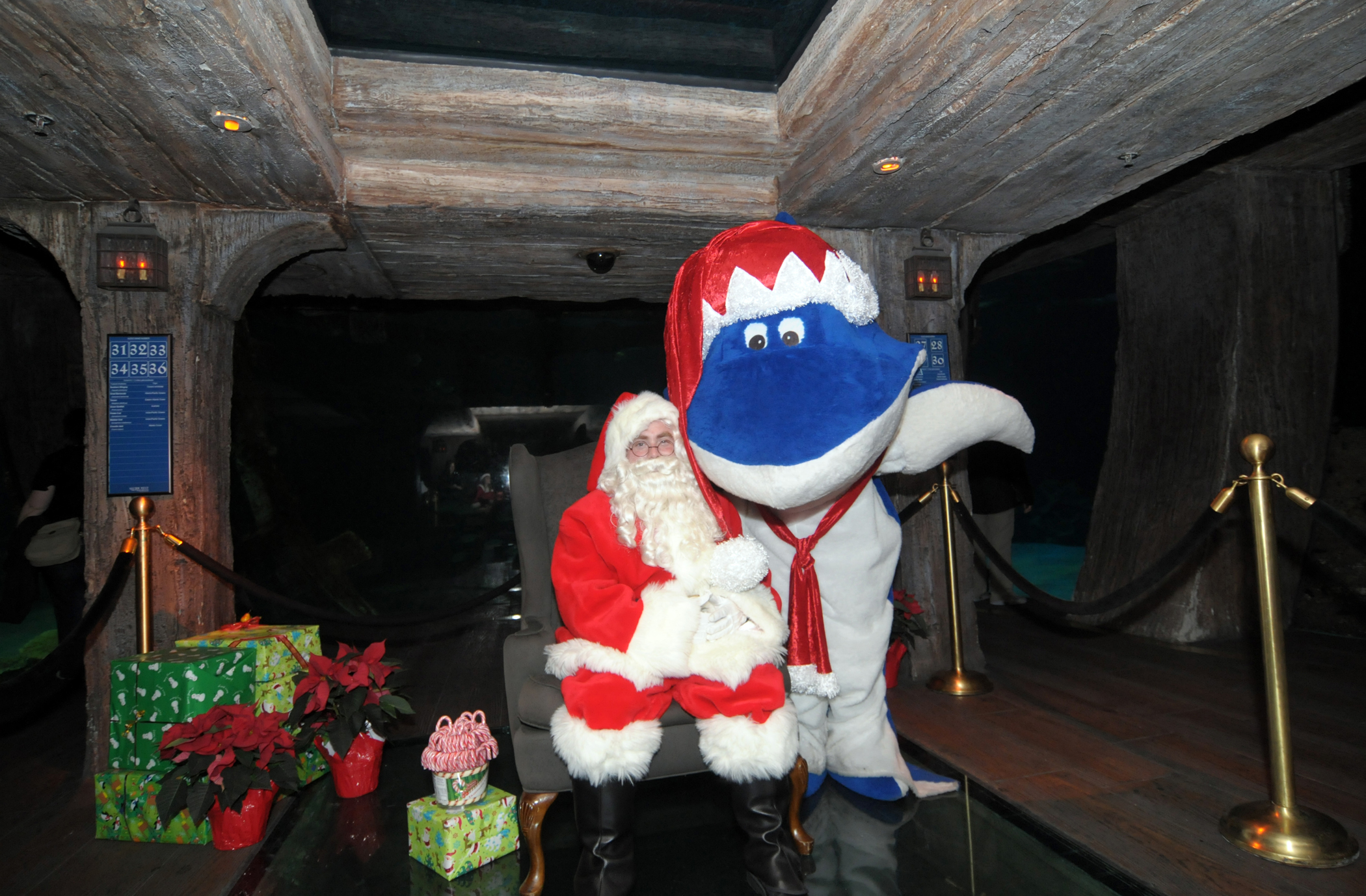 """Santa in the Shipwreck"" at Shark Reef Aquarium at Mandalay Bay"